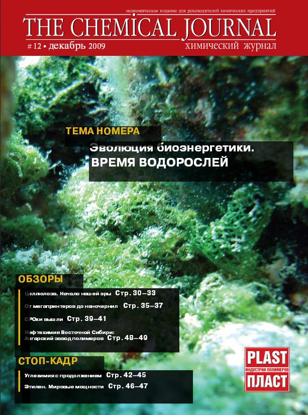 Декабрь 2009 | Выпуск